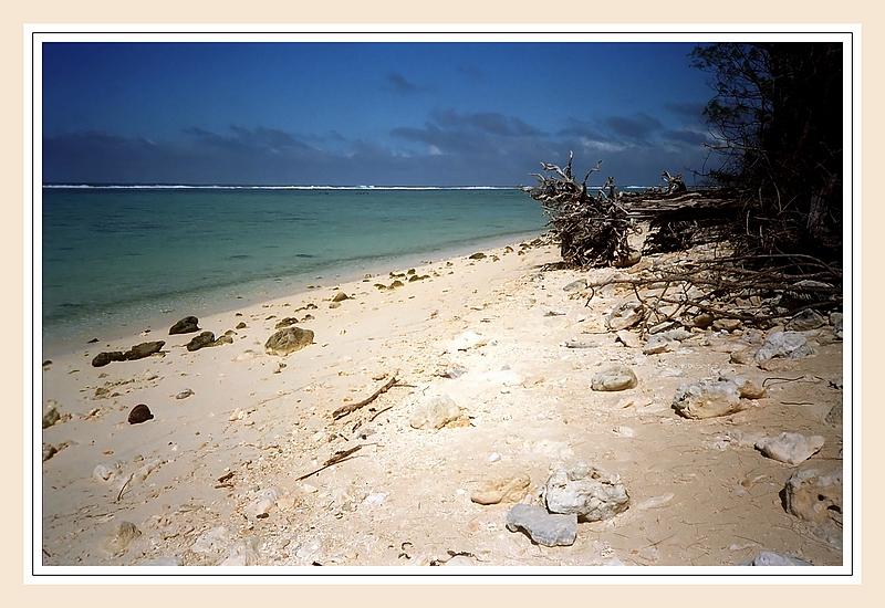 中国新西兰库克群岛合作 建设rarotonga供水项目