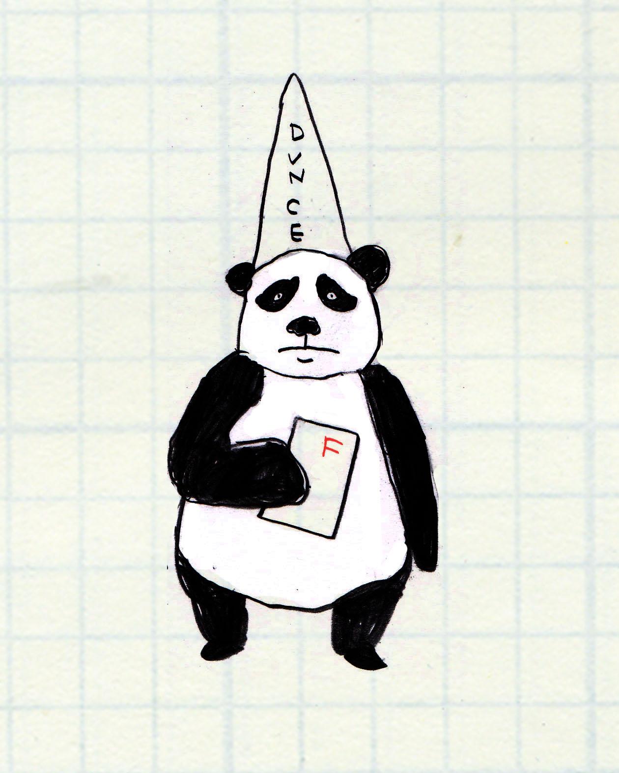 nz女孩卖玩偶保护大熊猫 四川女孩帮种竹林圆梦