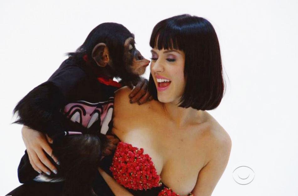 低胸装频频遭黑猩猩揩油摸胸